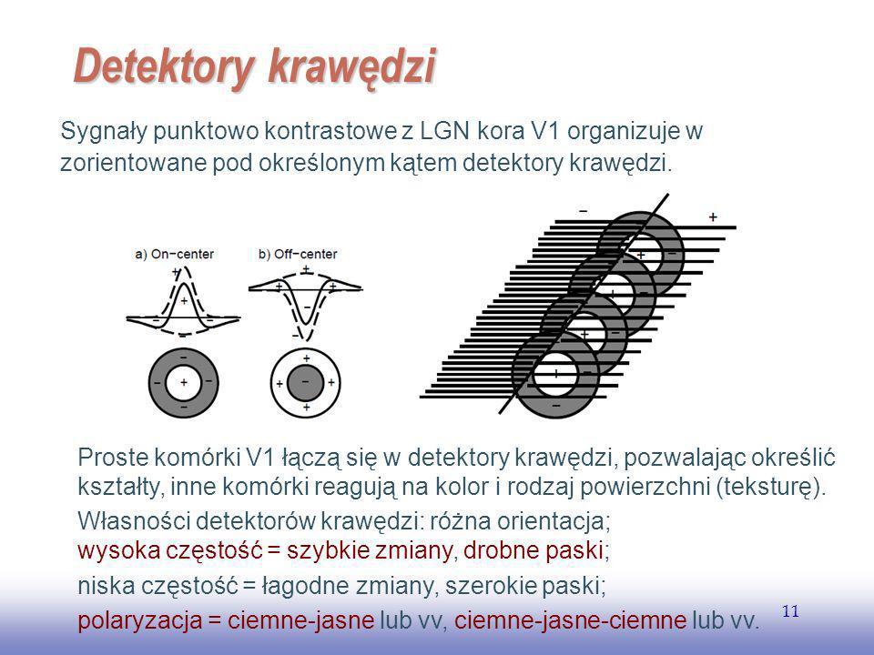 EE141 11 Detektory krawędzi Sygnały punktowo kontrastowe z LGN kora V1 organizuje w zorientowane pod określonym kątem detektory krawędzi.