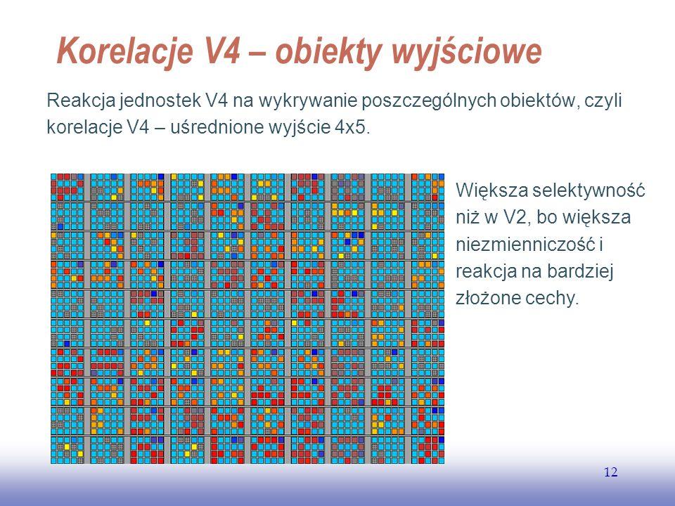 EE141 12 Korelacje V4 – obiekty wyjściowe Reakcja jednostek V4 na wykrywanie poszczególnych obiektów, czyli korelacje V4 – uśrednione wyjście 4x5. Wię