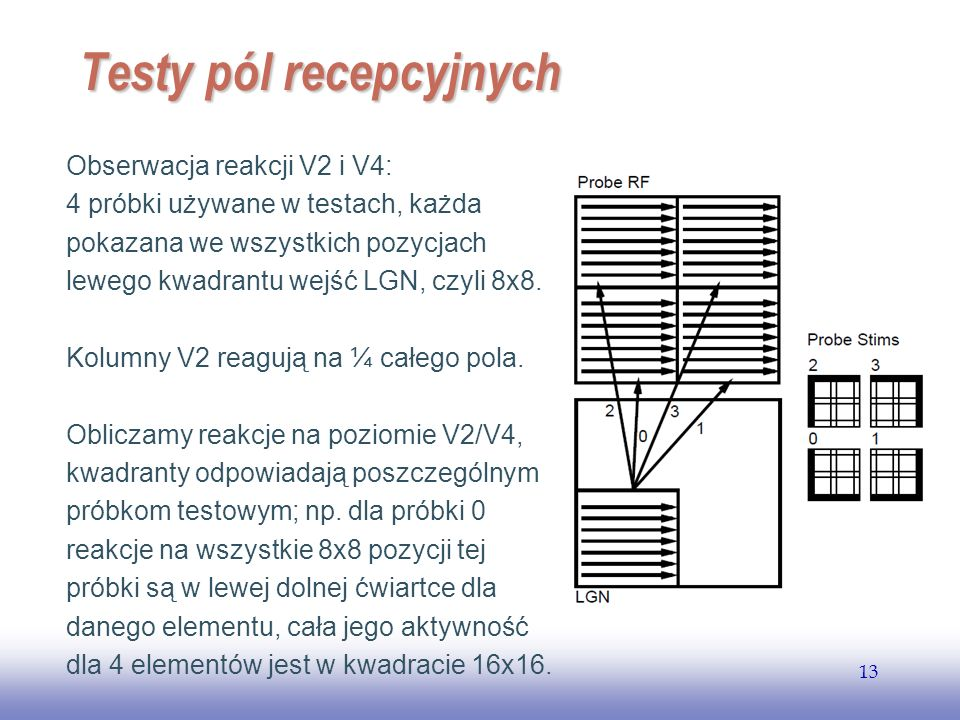 EE141 13 Testy pól recepcyjnych Obserwacja reakcji V2 i V4: 4 próbki używane w testach, każda pokazana we wszystkich pozycjach lewego kwadrantu wejść