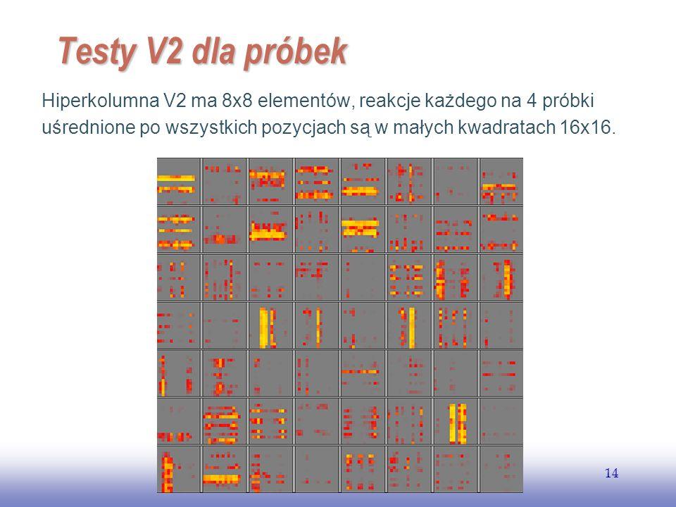EE141 14 Testy V2 dla próbek Hiperkolumna V2 ma 8x8 elementów, reakcje każdego na 4 próbki uśrednione po wszystkich pozycjach są w małych kwadratach 1