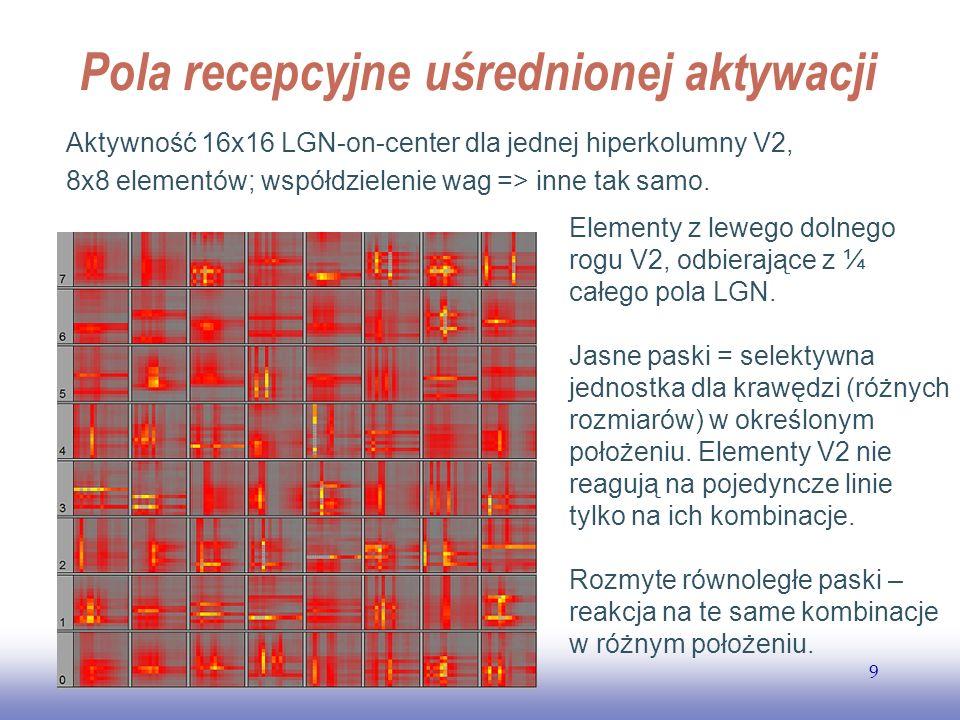 EE141 9 Pola recepcyjne uśrednionej aktywacji Aktywność 16x16 LGN-on-center dla jednej hiperkolumny V2, 8x8 elementów; współdzielenie wag => inne tak
