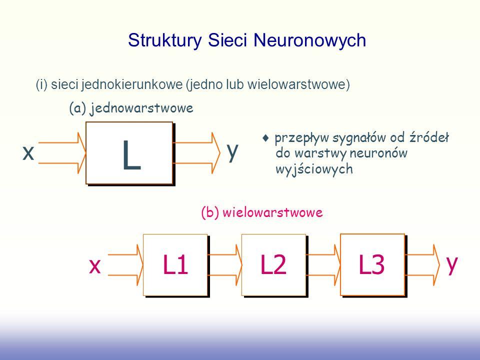 Przykłady i terminologia: (a) sieć jednowarstwowa (b) sieć wielowarstwowa we1 we2 we3 we4 n1 n2 n3 n4 wy1 wy2 wy3 wy4 Warstwa wejściowa węzłów źródłowych Warstwa neuronów wyjściowych we1 we2 we3 we4 we5 we6 we7 we8 we9 we10 n1 n2 n3 n4 n5 n6 wy1 wy2 Warstwa wejściowa węzłów źródłowych Warstwa neuronów ukrytych Warstwa neuronów wyjściowych Struktury Sieci Neuronowych
