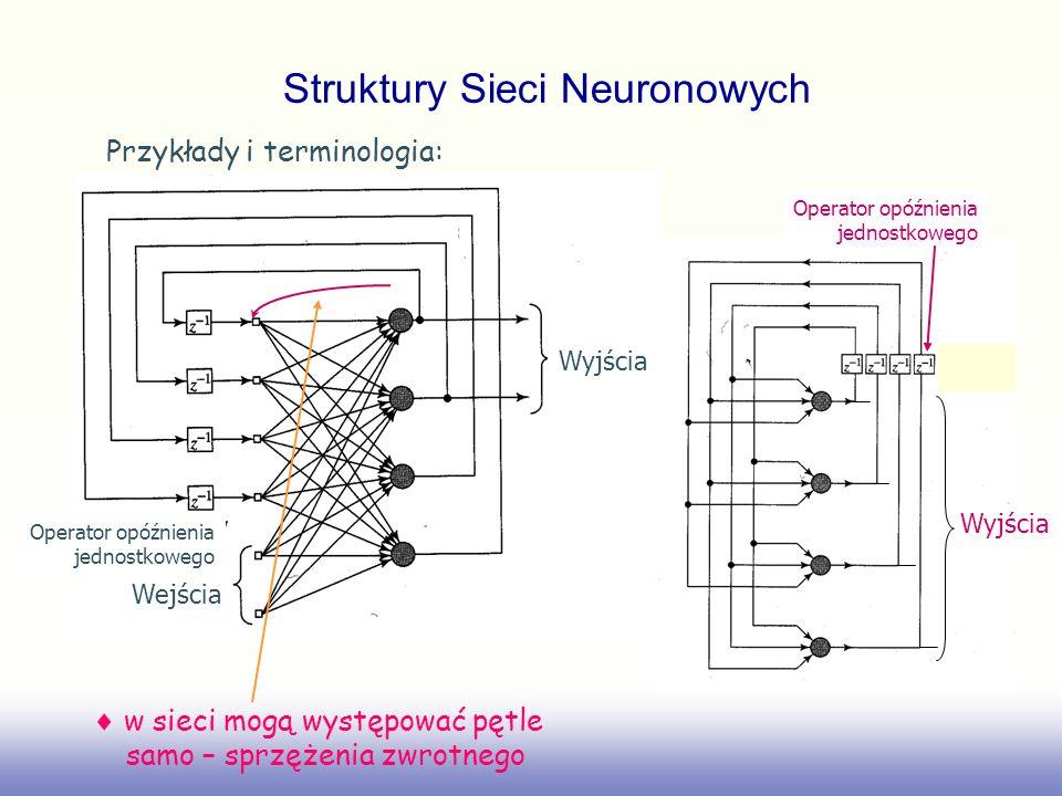 (iii) sieci komórkowe regularnie rozmieszczone przestrzennie neurony zwane komórkami każda komórka powiązana bezpośrednio z wszystkimi komórkami swego najbliższego sąsiedztwa (przyległymi) powiązania pomiędzy komórkami są dwukierunkowe Struktury Sieci Neuronowych