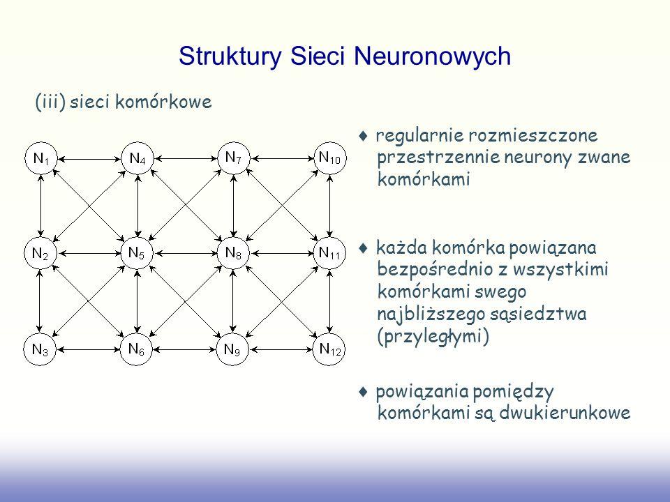 (iii) sieci komórkowe regularnie rozmieszczone przestrzennie neurony zwane komórkami każda komórka powiązana bezpośrednio z wszystkimi komórkami swego