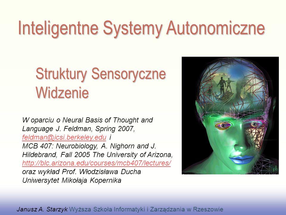 Struktury Sensoryczne Widzenie Janusz A.
