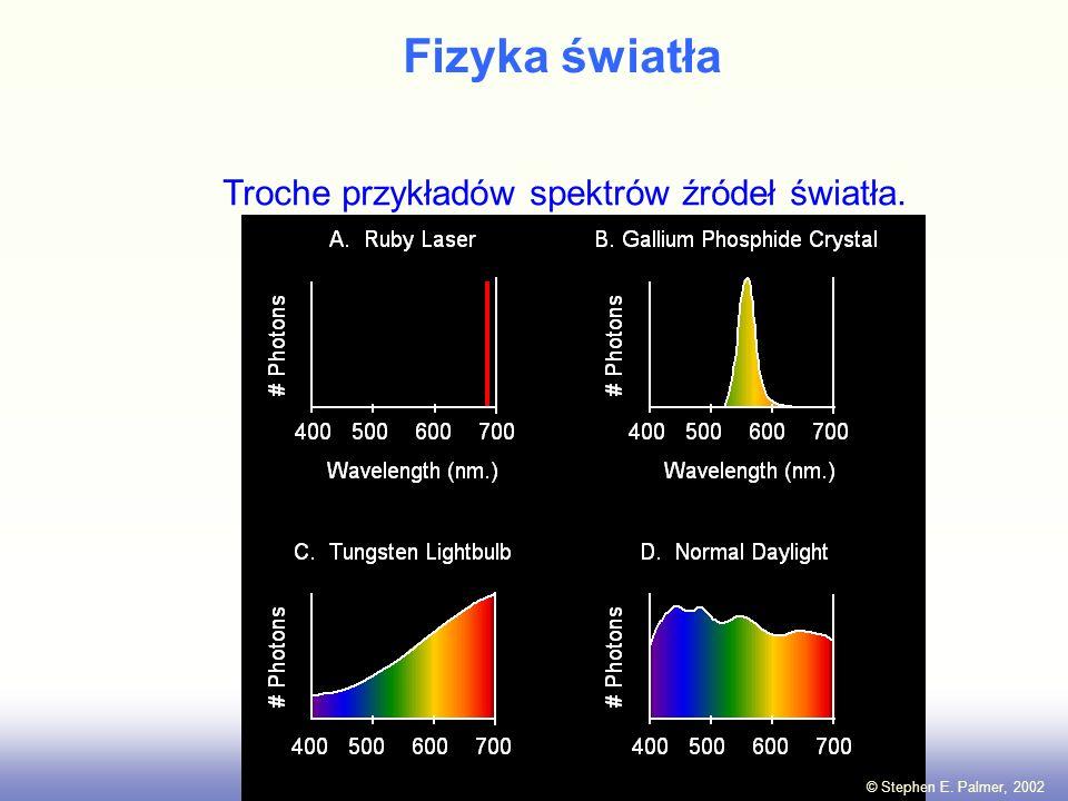 Fizyka światła Światło: Elektromagnetyczna energia której długość fali wynosi między 400 nm a 700 nm. (1 nm = 10 meter) -6 © Stephen E. Palmer, 2002 4