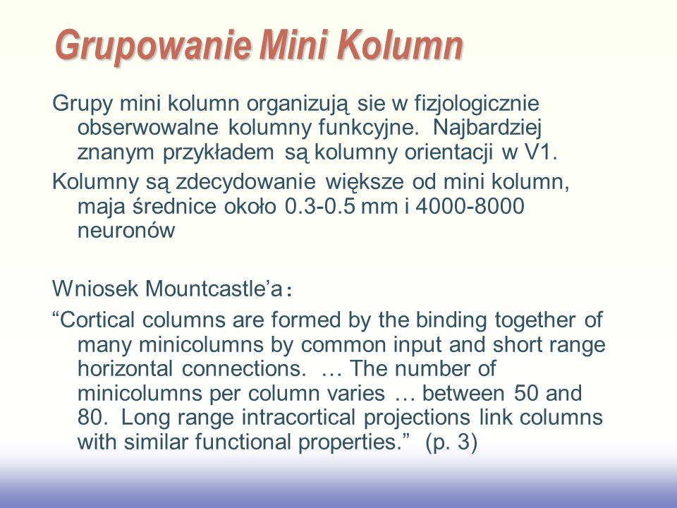 EE141 Grupy mini kolumn organizują sie w fizjologicznie obserwowalne kolumny funkcyjne. Najbardziej znanym przykładem są kolumny orientacji w V1. Kolu