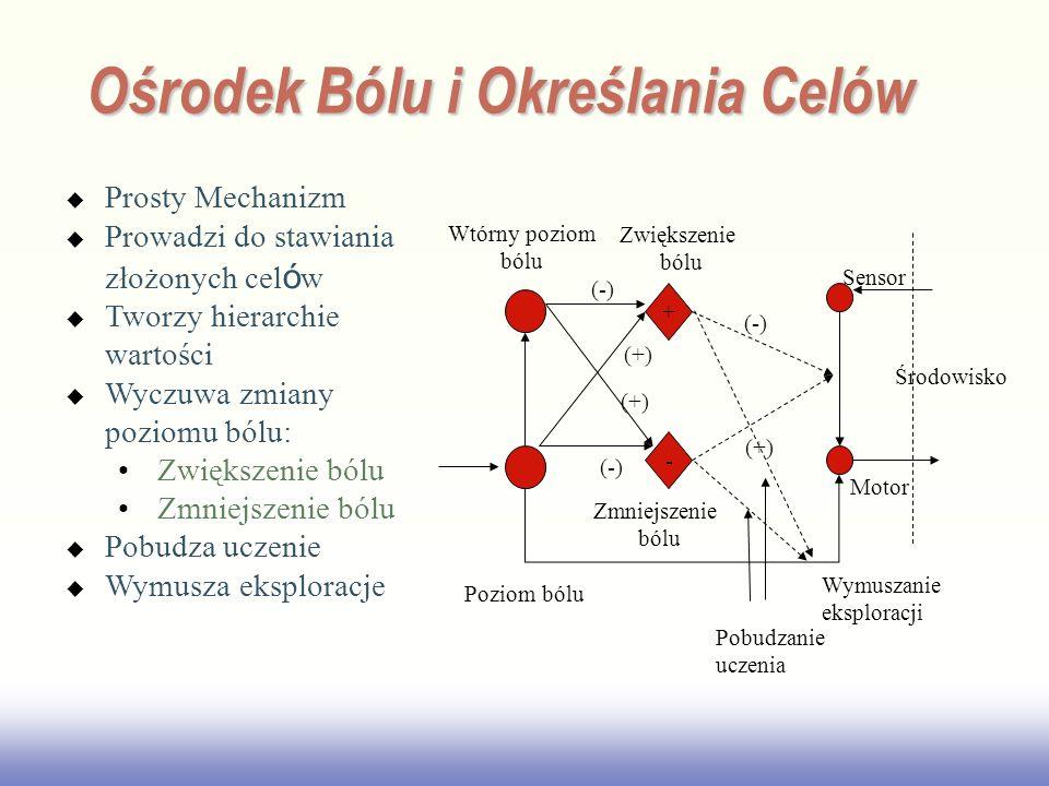 EE141 Ośrodek Bólu i Określania Celów Prosty Mechanizm Prowadzi do stawiania złożonych cel ó w Tworzy hierarchie wartości Wyczuwa zmiany poziomu bólu: Zwiększenie bólu Zmniejszenie bólu Pobudza uczenie Wymusza eksploracje + - Środowisko Sensor Motor Poziom bólu Wtórny poziom bólu Zwiększenie bólu Zmniejszenie bólu (-) (+) Pobudzanie uczenia (-) (+) Wymuszanie eksploracji