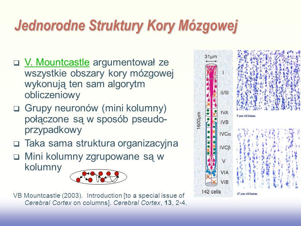EE141 V. Mountcastle argumentował ze wszystkie obszary kory mózgowej wykonują ten sam algorytm obliczeniowy V. Mountcastle Grupy neuronów (mini kolumn