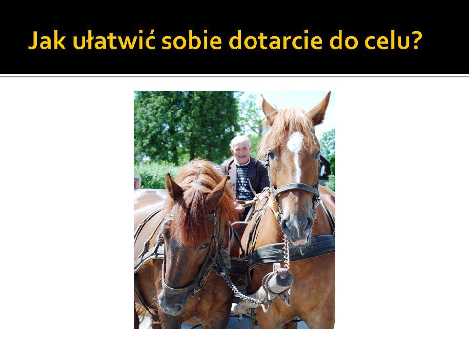 Baza Dobrych Praktyk z Programu Integracji Społecznej (ponad 8ooo usług, ponad 800 nowych organizacji i ponad 1000 nowych grup nieformalnych) www.ppwow.gov.pl oraz publikacja W dobrym kierunku-czyli jak realizować usługi integracji społecznej