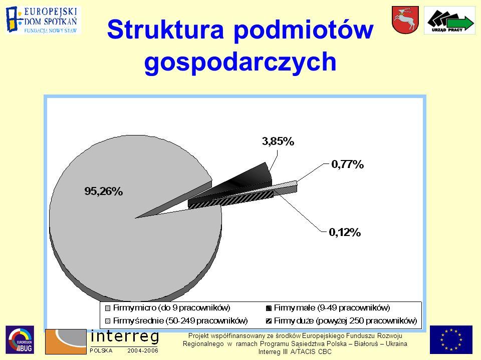Struktura podmiotów gospodarczych Projekt współfinansowany ze środków Europejskiego Funduszu Rozwoju Regionalnego w ramach Programu Sąsiedztwa Polska – Białoruś – Ukraina Interreg III A/TACIS CBC