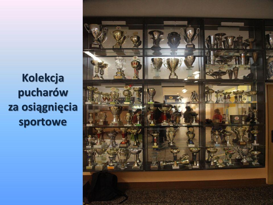 Kolekcja pucharów za osiągnięcia sportowe