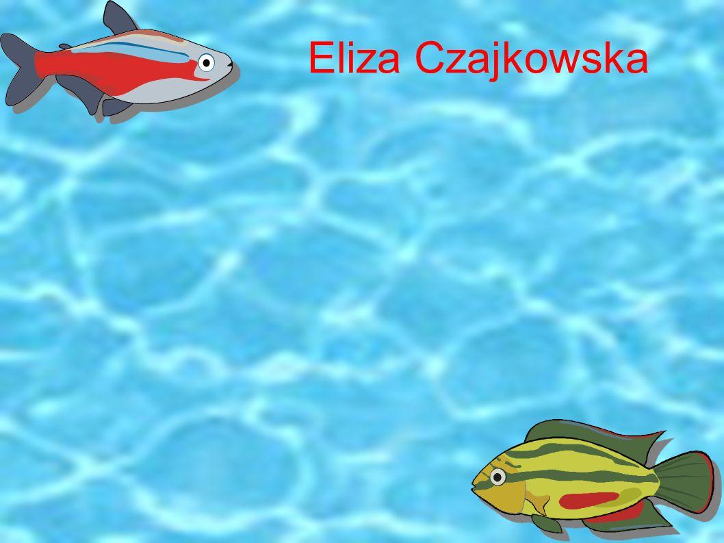 Eliza Czajkowska