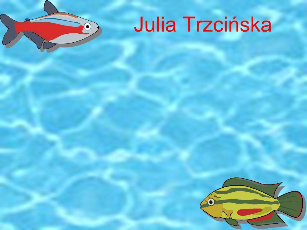 Julia Trzcińska