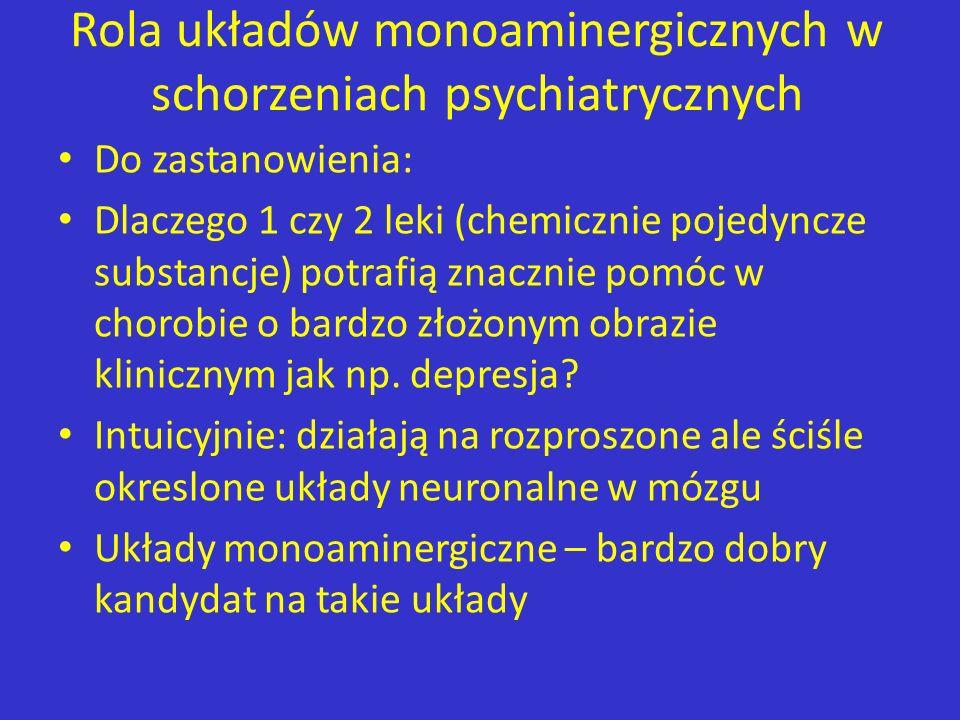 Rola układów monoaminergicznych w schorzeniach psychiatrycznych Do zastanowienia: Dlaczego 1 czy 2 leki (chemicznie pojedyncze substancje) potrafią zn