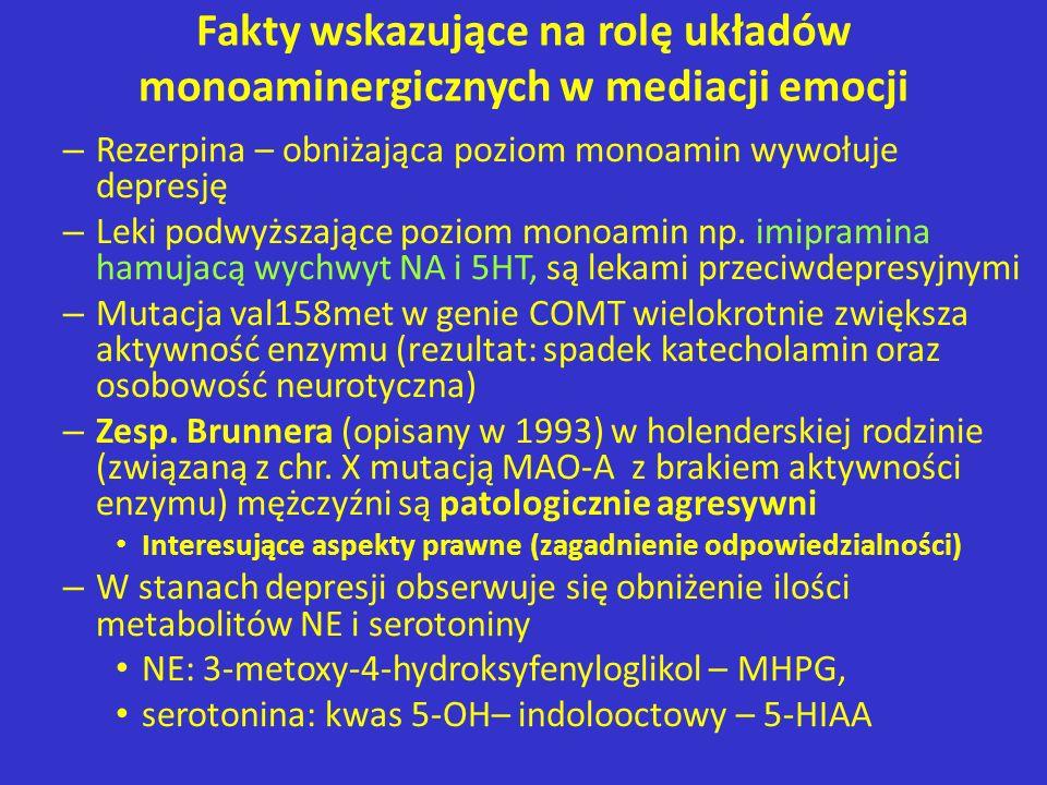 Fakty wskazujące na rolę układów monoaminergicznych w mediacji emocji – Rezerpina – obniżająca poziom monoamin wywołuje depresję – Leki podwyższające