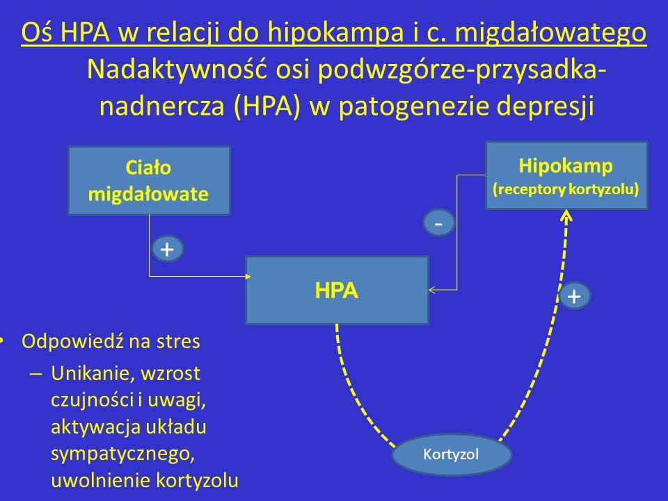 HPA Ciało migdałowate Hipokamp (receptory kortyzolu) Kortyzol + - + Odpowiedź na stres – Unikanie, wzrost czujności i uwagi, aktywacja układu sympatyc