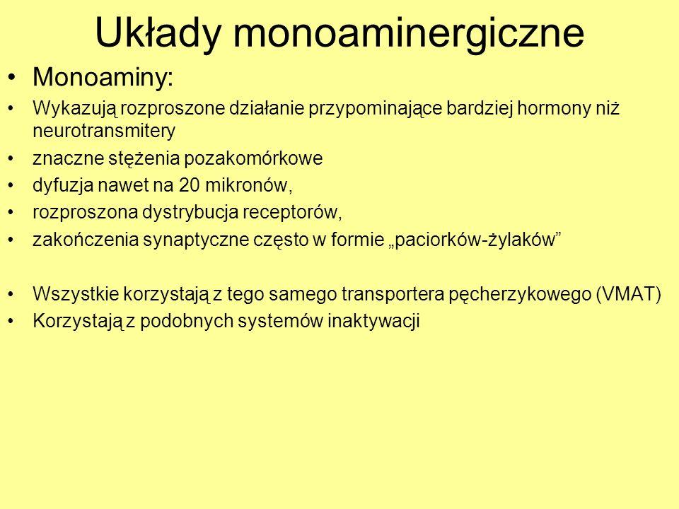 Układy monoaminergiczne Inaktywacja : –Wychwyt transportery o wysokim powinowactwie – DA-T (dla dopaminy), NE-T (noradrenaliny), SER-T (serotoniny) obecne na zakończeniach synaptycznych (wszystkie nie są ściśle swoiste i wychwytują co najmniej jeszcze jedną z wymienionych monoamin) Transportery o niskim powinowactwie (umiejscowione z dala od zakończeń synaptycznych) –Organic cation transporter (także wychwyt histaminy) –Plasma membrane monoamine transporter –Rozkład enzymatyczny Katecholo-O-metylotransferaza (COMT) – pozakomórkowo Monoaminooksydaza A (MAO-A) wewnątrzkomórkowo (także dla histaminy)