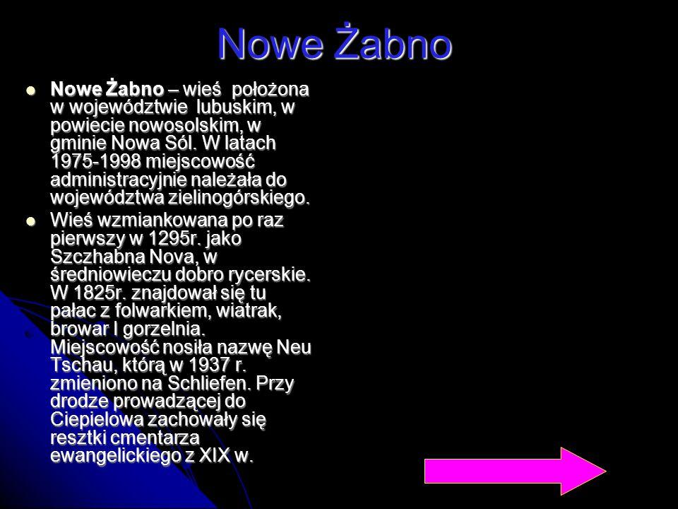 Nowe Żabno Nowe Żabno – wieś położona w województwie lubuskim, w powiecie nowosolskim, w gminie Nowa Sól. W latach 1975-1998 miejscowość administracyj