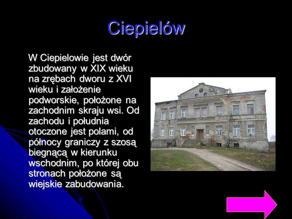 Ciepielów W Ciepielowie jest dwór zbudowany w XIX wieku na zrębach dworu z XVI wieku i założenie podworskie, położone na zachodnim skraju wsi. Od zach