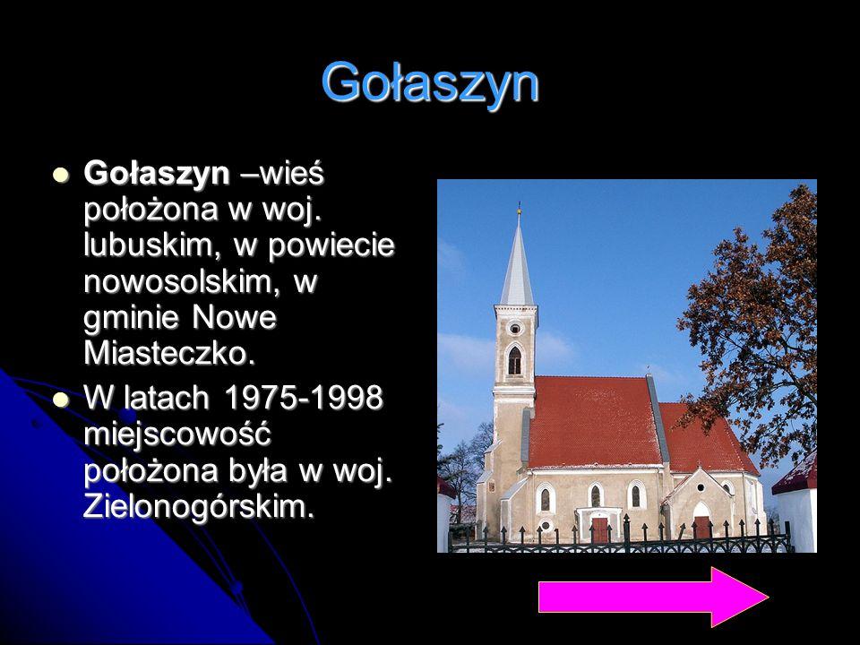 Gołaszyn Gołaszyn –wieś położona w woj. lubuskim, w powiecie nowosolskim, w gminie Nowe Miasteczko. Gołaszyn –wieś położona w woj. lubuskim, w powieci