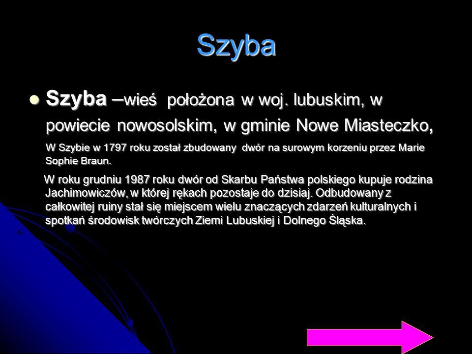 Szyba Szyba – wieś położona w woj. lubuskim, w powiecie nowosolskim, w gminie Nowe Miasteczko, Szyba – wieś położona w woj. lubuskim, w powiecie nowos
