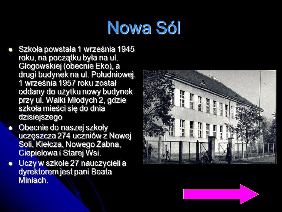 Nowa Sól Szkoła powstała 1 września 1945 roku, na początku była na ul. Głogowskiej (obecnie Eko), a drugi budynek na ul. Południowej. 1 września 1957