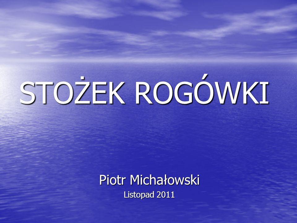 STOŻEK ROGÓWKI Piotr Michałowski Listopad 2011