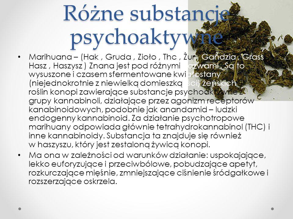 Różne substancje psychoaktywne Marihuana – (Hak, Gruda, Zioło, Thc, Żur, Gandzia, Grass, Hasz, Haszysz ) Znana jest pod różnymi nazwami. Są to wysuszo