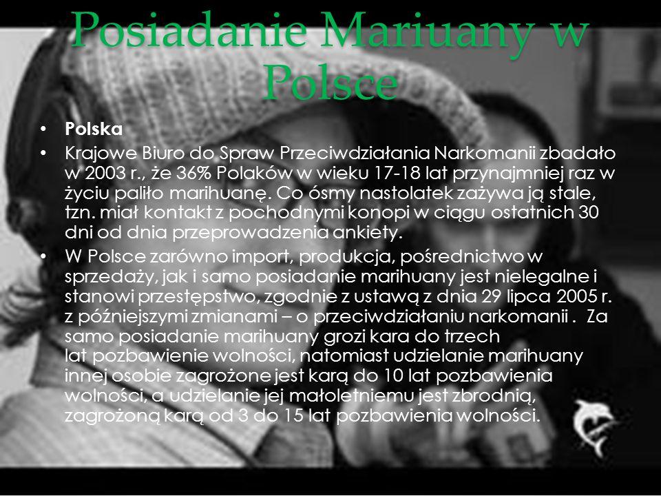 Posiadanie Mariuany w Polsce Polska Krajowe Biuro do Spraw Przeciwdziałania Narkomanii zbadało w 2003 r., że 36% Polaków w wieku 17-18 lat przynajmnie