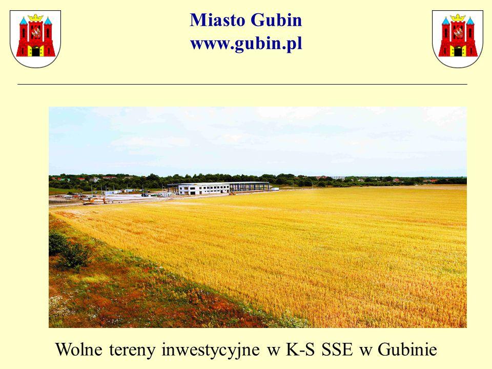 Miasto Gubin www.gubin.pl Wolne tereny inwestycyjne w K-S SSE w Gubinie