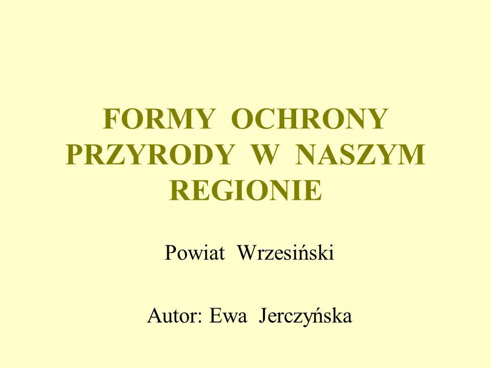 FORMY OCHRONY PRZYRODY W NASZYM REGIONIE Powiat Wrzesiński Autor: Ewa Jerczyńska
