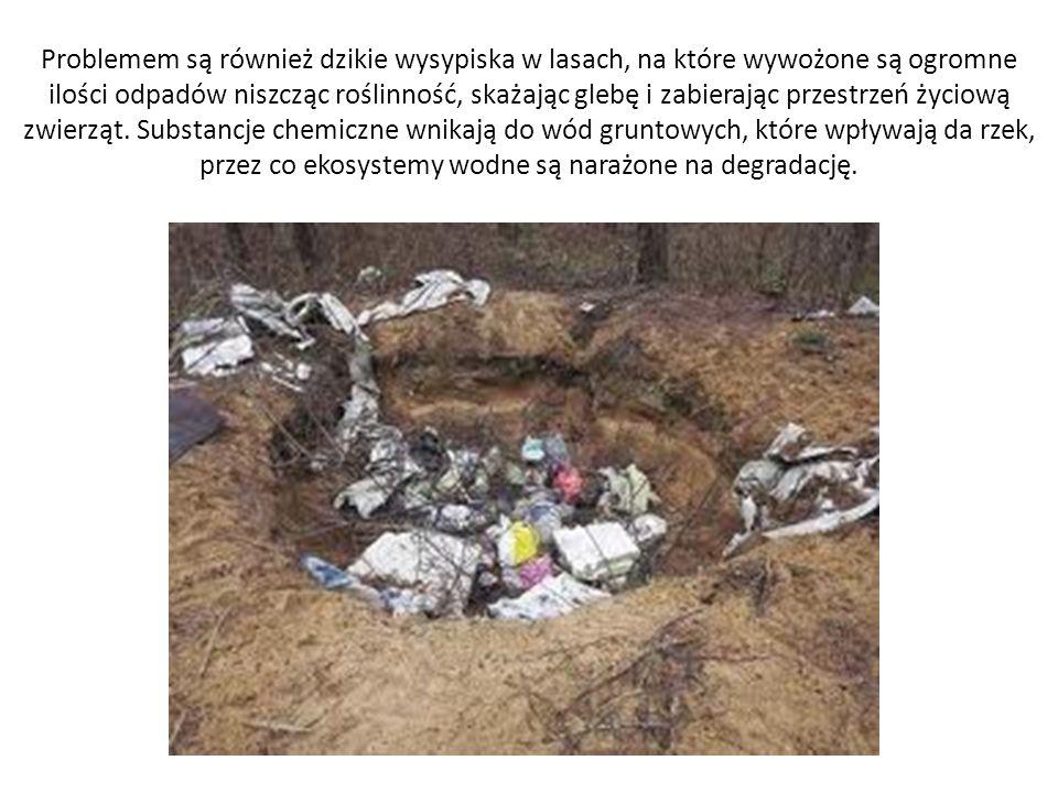 Problemem są również dzikie wysypiska w lasach, na które wywożone są ogromne ilości odpadów niszcząc roślinność, skażając glebę i zabierając przestrzeń życiową zwierząt.