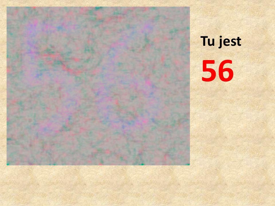 Tu jest 56