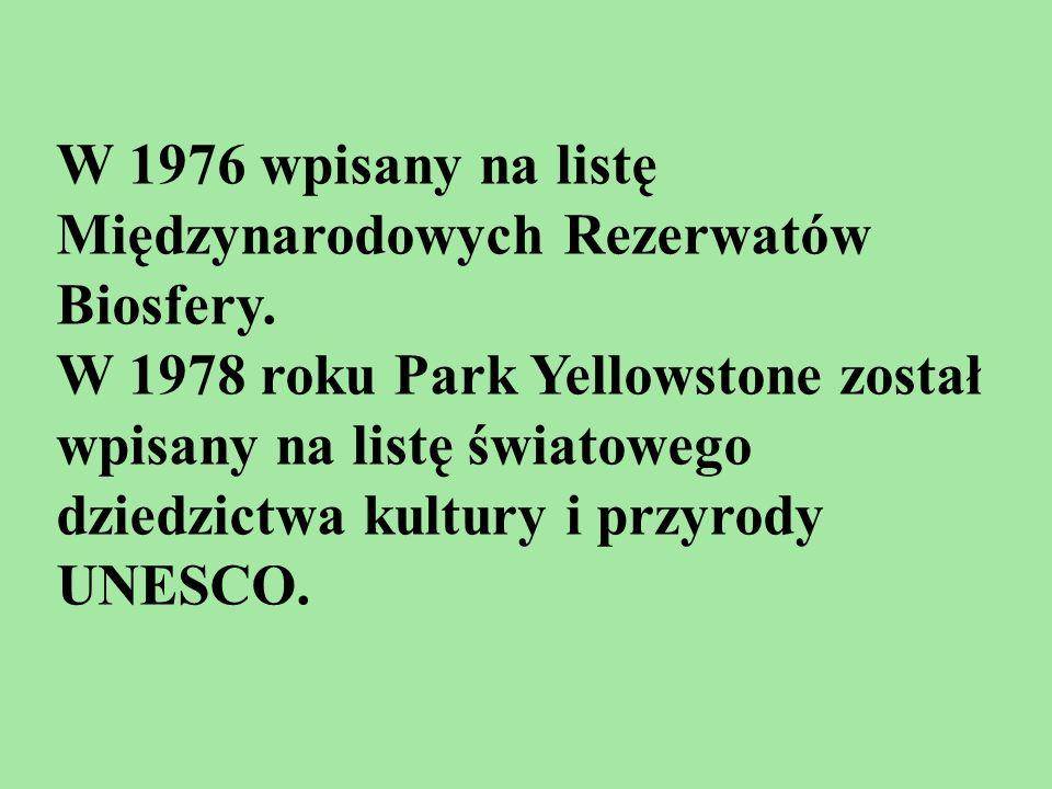 W 1976 wpisany na listę Międzynarodowych Rezerwatów Biosfery. W 1978 roku Park Yellowstone został wpisany na listę światowego dziedzictwa kultury i pr