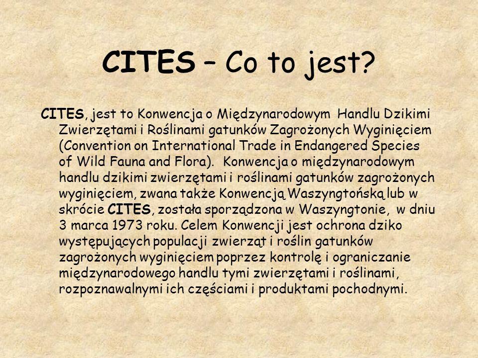 CITES – Co to jest? CITES, jest to Konwencja o Międzynarodowym Handlu Dzikimi Zwierzętami i Roślinami gatunków Zagrożonych Wyginięciem (Convention on