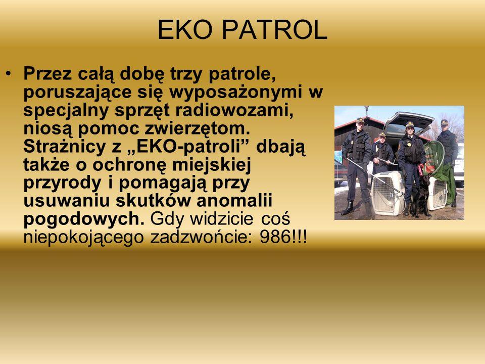 EKO PATROL Przez całą dobę trzy patrole, poruszające się wyposażonymi w specjalny sprzęt radiowozami, niosą pomoc zwierzętom.