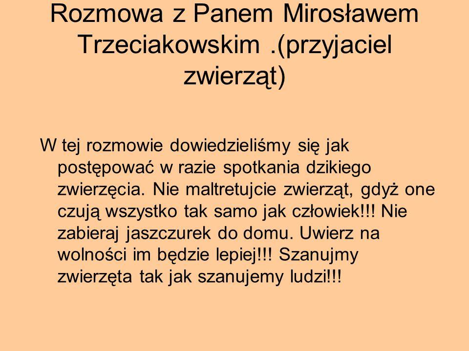 Rozmowa z Panem Mirosławem Trzeciakowskim.(przyjaciel zwierząt) W tej rozmowie dowiedzieliśmy się jak postępować w razie spotkania dzikiego zwierzęcia.