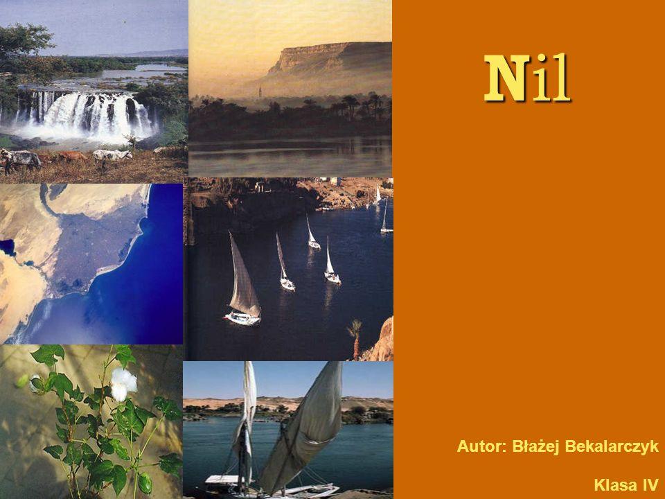 D ar N ilu Dla Egiptu Nil był, i ciągle jest, życiodajną siłą.