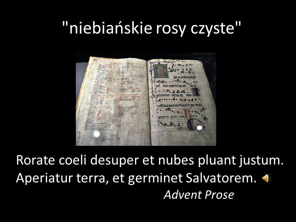 niebiańskie rosy czyste Rorate coeli desuper et nubes pluant justum.