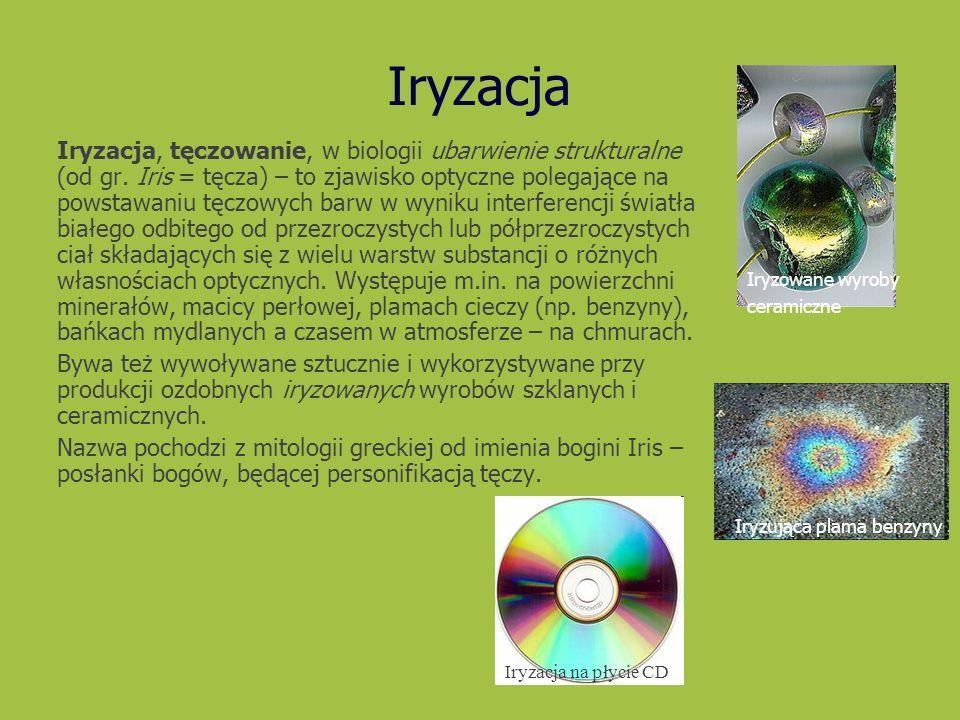 Iryzacja Iryzująca plama benzyny Iryzowane wyroby ceramiczne Iryzacja, tęczowanie, w biologii ubarwienie strukturalne (od gr. Iris = tęcza) – to zjawi