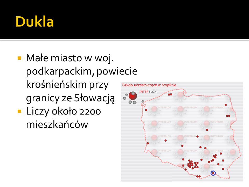 Małe miasto w woj. podkarpackim, powiecie krośnieńskim przy granicy ze Słowacją Liczy około 2200 mieszkańców
