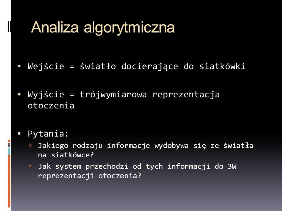Analiza algorytmiczna Wejście = światło docierające do siatkówki Wyjście = trójwymiarowa reprezentacja otoczenia Pytania: Jakiego rodzaju informacje w