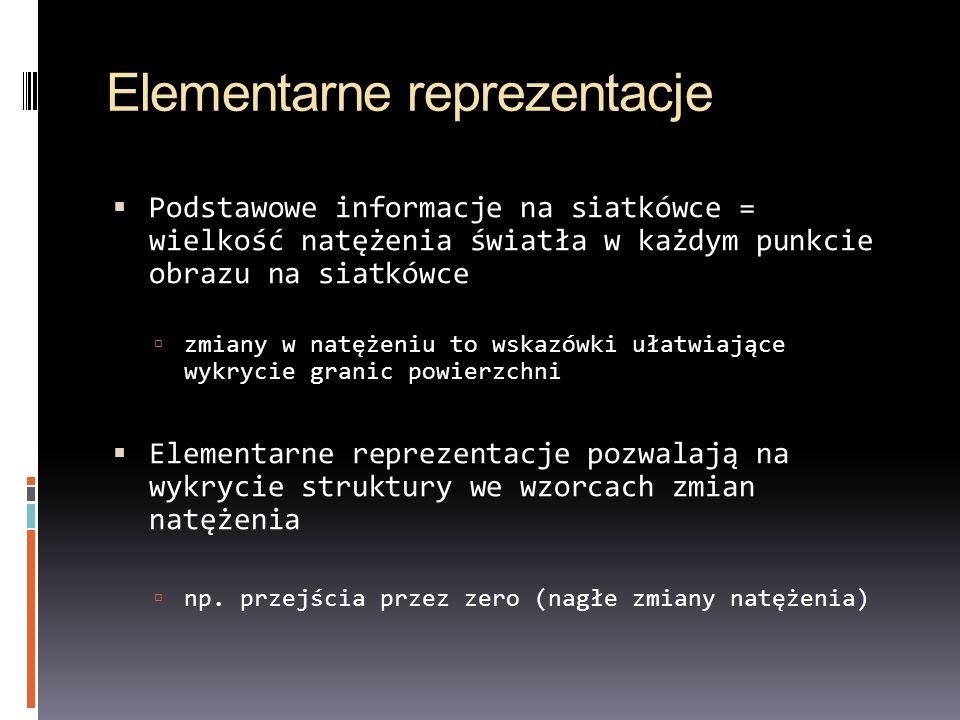 Elementarne reprezentacje Podstawowe informacje na siatkówce = wielkość natężenia światła w każdym punkcie obrazu na siatkówce zmiany w natężeniu to w