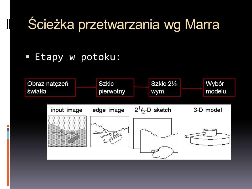 Ścieżka przetwarzania wg Marra Etapy w potoku: Obraz natężeń światła Szkic pierwotny Wybór modelu Szkic 2½ wym.