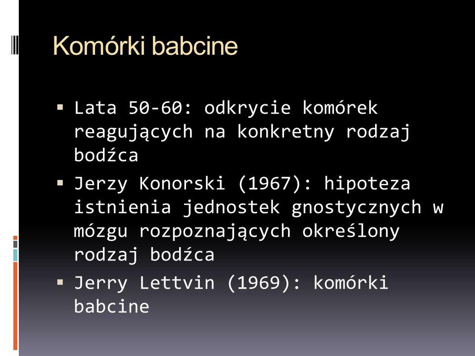 Komórki babcine Lata 50-60: odkrycie komórek reagujących na konkretny rodzaj bodźca Jerzy Konorski (1967): hipoteza istnienia jednostek gnostycznych w