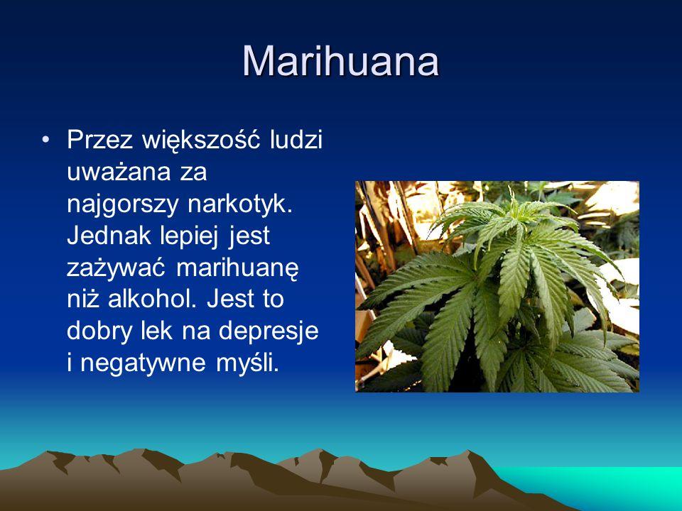 Marihuana Przez większość ludzi uważana za najgorszy narkotyk. Jednak lepiej jest zażywać marihuanę niż alkohol. Jest to dobry lek na depresje i negat