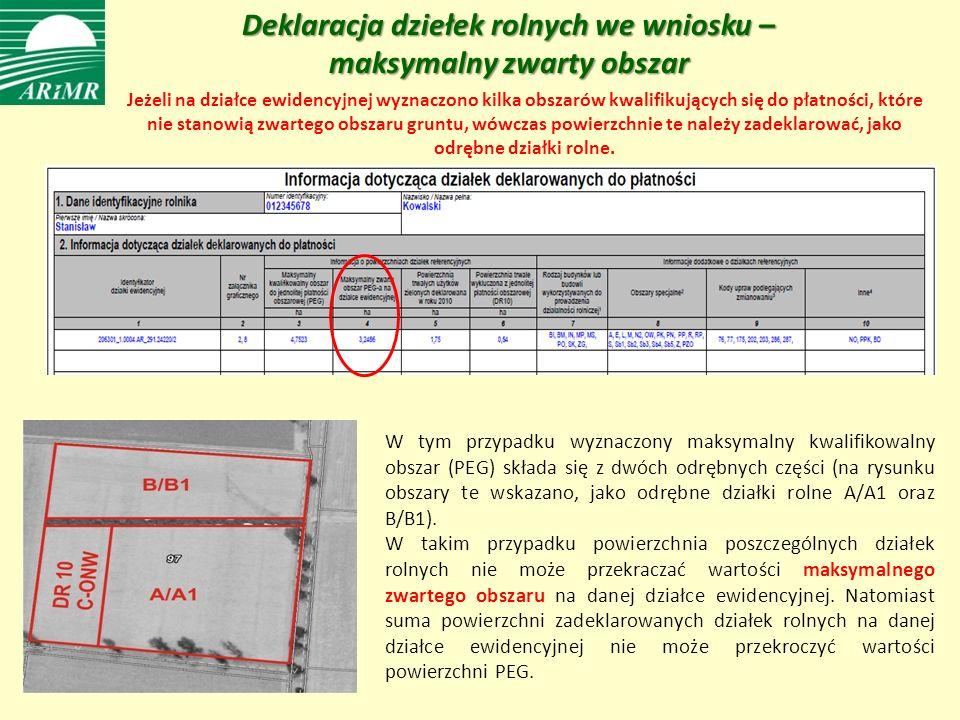 Deklaracja dziełek rolnych we wniosku – maksymalny zwarty obszar W tym przypadku wyznaczony maksymalny kwalifikowalny obszar (PEG) składa się z dwóch odrębnych części (na rysunku obszary te wskazano, jako odrębne działki rolne A/A1 oraz B/B1).