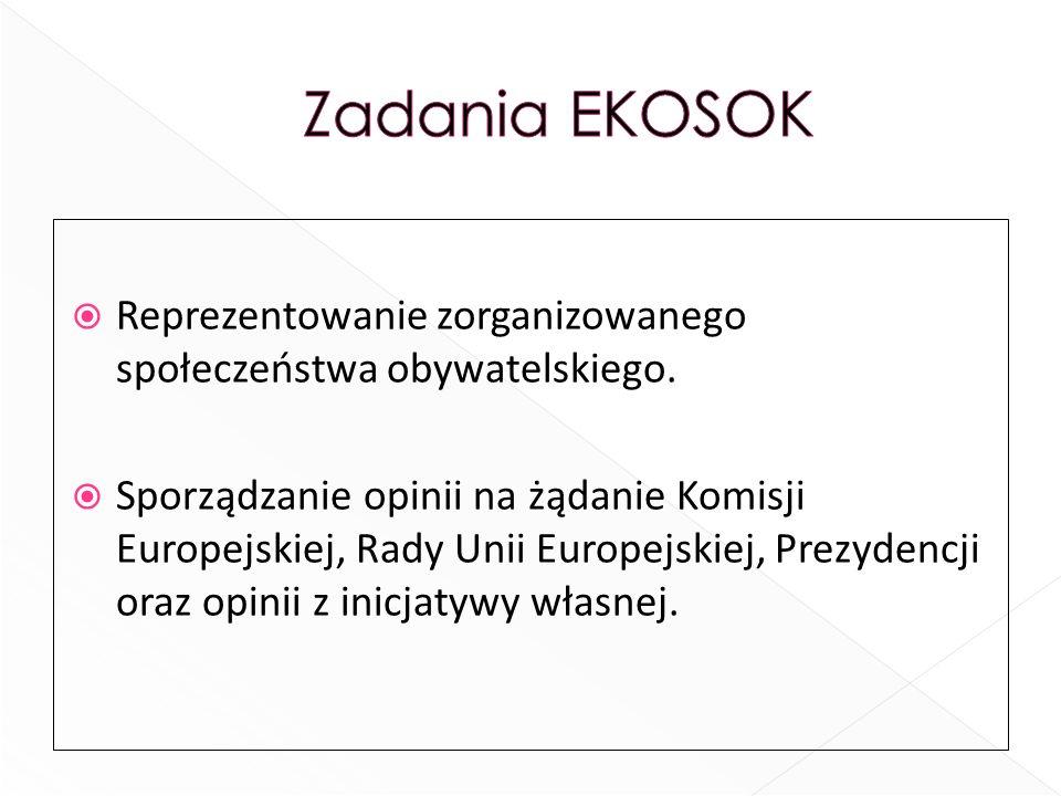 Reprezentowanie zorganizowanego społeczeństwa obywatelskiego. Sporządzanie opinii na żądanie Komisji Europejskiej, Rady Unii Europejskiej, Prezydencji