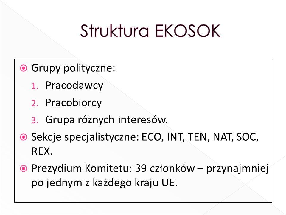 Grupy polityczne: 1. Pracodawcy 2. Pracobiorcy 3. Grupa różnych interesów. Sekcje specjalistyczne: ECO, INT, TEN, NAT, SOC, REX. Prezydium Komitetu: 3